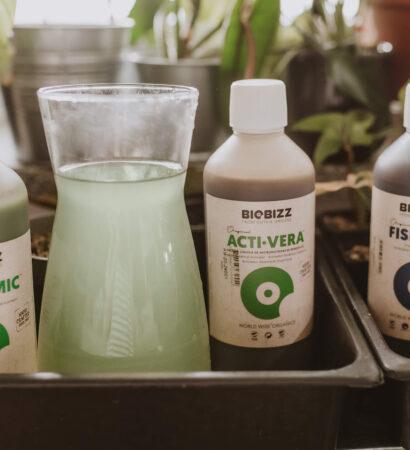 Jak łączyć produkty Biobizz?