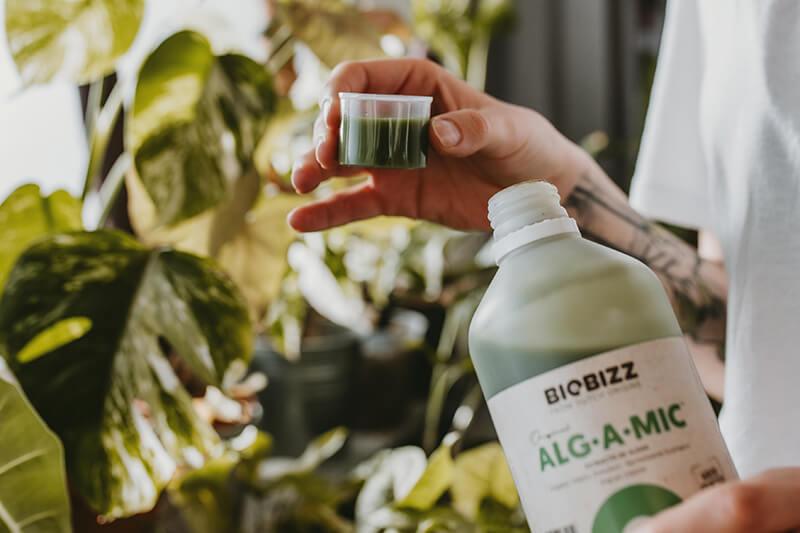 Jak łączyć nawozy biobizz 04