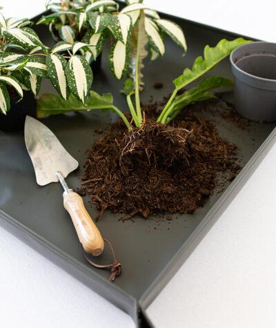 Mata do przesadzania roślin busz.busz 04
