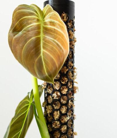 Palik 3D do roślin pnących